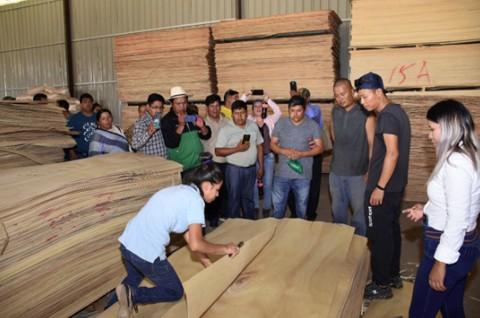 Carpinteros-se-interiorizan-en-el-proceso-de-la-madera