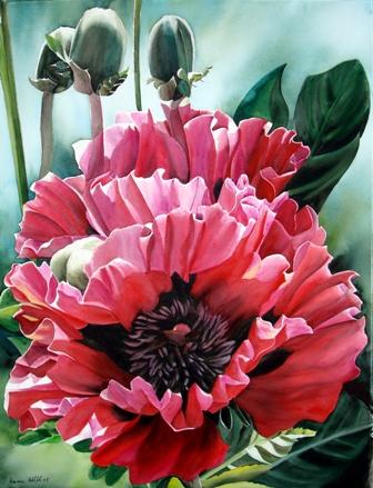 Una-sinfonia-de-flores-en-la-Casa-de-la-Cultura