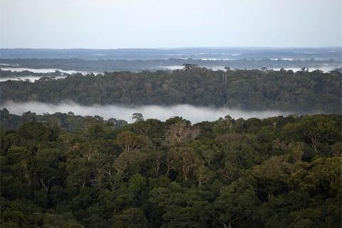 Tribu-gana-juicio-contra-Ecuador-y-salva-miles-de-hectareas-en-la-Amazonia