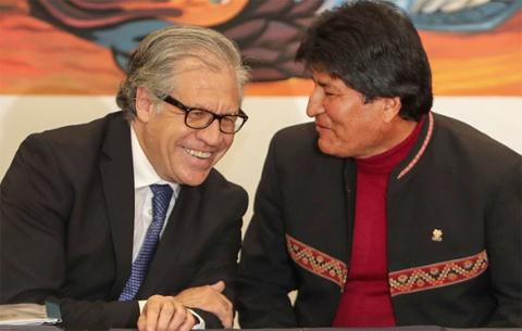 Presentan-reclamo-ante-la-OEA-por-el-apoyo-de-Almagro-a-Evo