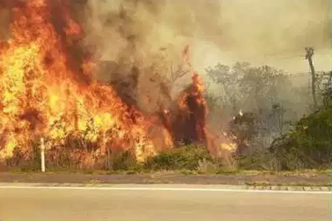 Suspenden-paro-civico-por-incendios-en-la-Chiquitania