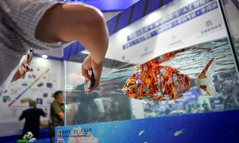 Conferencia-Mundial-de-Robots-2019-en-Beijing