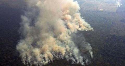 Fuerzas-Armadas-de-Brasil-empiezan-a-combatir-el-incendio