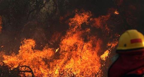 CAF-ofrece-apoyo-para-atender-los-incendios-en-Bolivia,-Brasil-y-Paraguay