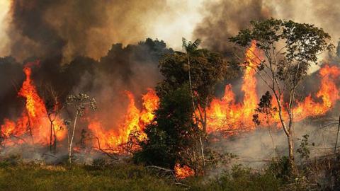 Canada-ofrece-aviones-y-$us-11-millones-contra-incendios-en-la-Amazonia