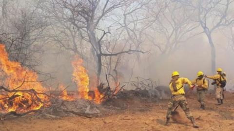 ABT-amplio-autorizaciones-de-quemas-y-desmontes-en-medio-del-desastre-ambiental