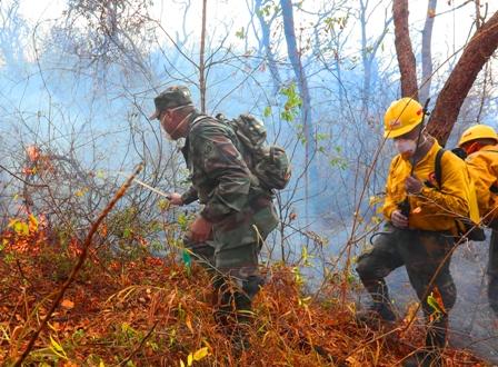 Unen-fuerzas-para-combatir-los-incendios