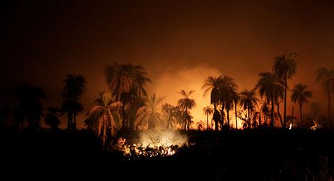 Argentina-envia-otros-227-brigadistas-para-combatir-incendios-en-Santa-Cruz