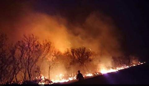 Gobernacion-de-Santa-Cruz-confirma:-2.4-millones-de-hectareas-fueron-devastadas