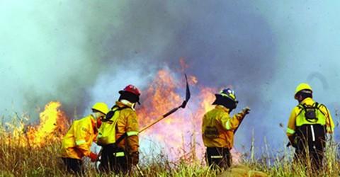 Suecia-y-Austria-envian-ayuda-para-coadyuvar-en-lucha-contra-los-incendios