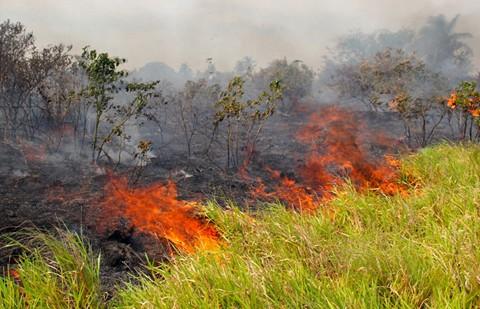 Beni-se-declara-en-alerta-roja-por-incendios-y-sequia