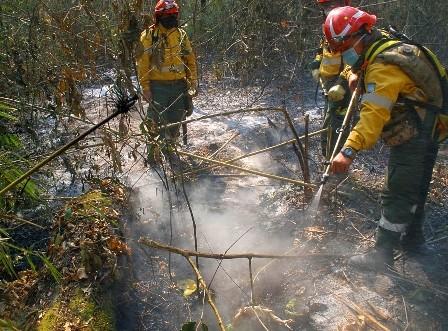 Bomberos-y-voluntarios-disminuyen-en-zonas-de-mitigacion-