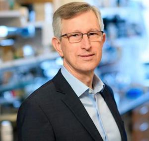 Científicos descubrieron la causa de la metástasis: se abre una vía para un posible tratamiento del cáncer