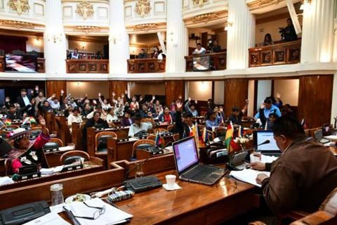Camara-de-Diputados-sanciona-Ley-de-Prorroga-de-Mandato