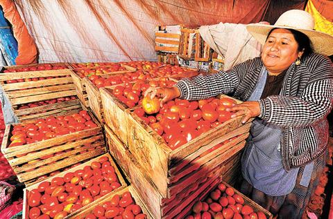 Bolivia-cerro-2019-con-inflacion-de-1,47%