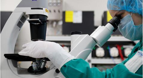 Crean un nuevo biomaterial que restauraría los huesos en pacientes con osteoporosis