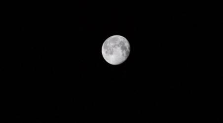 La-NASA-confirma-abundante-presencia-de-agua-congelada-en-la-Luna