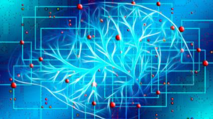 Identifican la posible ubicación física de la conciencia