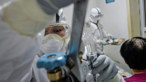 Hallan anticuerpos capaces de combatir el coronavirus