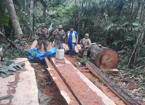 Decomisan 300 pies de madera en Guayaramerín