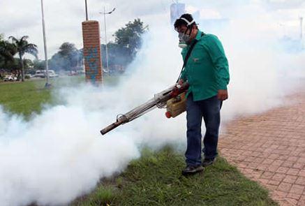 Continúan tareas de fumigación para evitar propagación del dengue