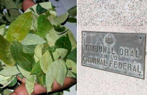 Justicia argentina determina que transportar coca no infringe ley antidroga