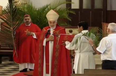 Iglesia Católica inicia Semana Santa con Domingo de Ramos en casa