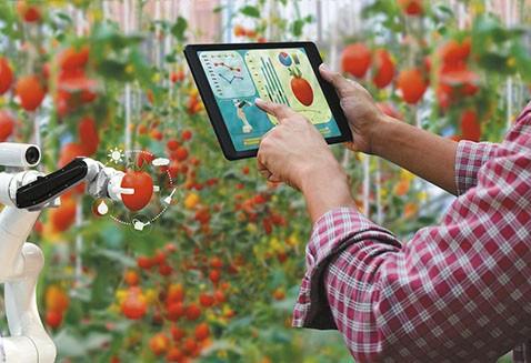 CAINCO-lanza-AgriHack-Virtual-2020-para-industriales