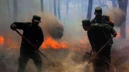 Una-joven-desata-un-enorme-incendio-forestal-en-Mexico-al-intentar-hacer-un-video-de-TikTok
