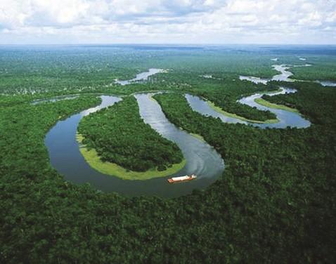 Revelador:-conservar-30-%-de-mar-y-tierra-pueden-generar-USD-250-mil-millones-al-ano