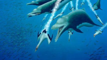 Identifican-a-un-delfin-extinto-como-un-depredador-alfa-que-aterraba-los-oceanos-en-el-pasado
