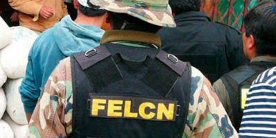 FELCN-decomiso-33.486-dosis-de-marihuana-valuadas-en-Bs-334.830
