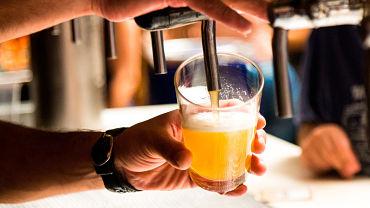 ¿Otra predicción de Los Simpson? La Policía desmantela en Brasil un bar clandestino 'disfrazado' de tienda de mascotas