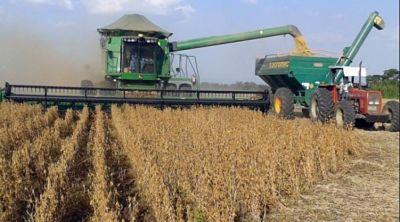 Productores de agricultura familiar piden puesta en marcha del Plan de Reactivación del Sector