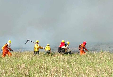 Controlan-el-85%-de-incendios-en-el-Parque-Otuquis