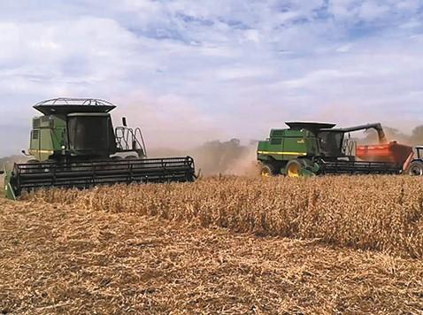 Por-los-bloqueos-el-agro-pierde-USD-13-millones-por-dia