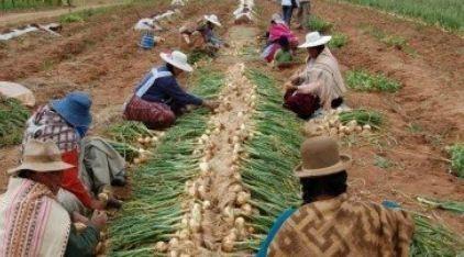 La-sobrecarga-laboral-de-las-mujeres-rurales-se-acentua-por-la-pandemia-del-Covid-19