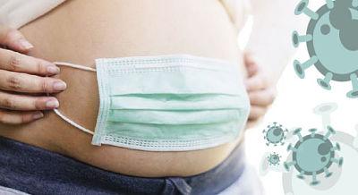 El coronavirus podría infectar a los embriones desde la segunda semana de embarazo