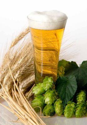 Los antioxidantes de la cerveza mejoran la salud