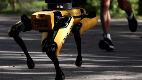 Imágenes de un perro robot patrullando las calles causan revuelo en las redes sociales