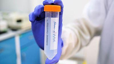 Desarrollan nanopartículas como 'caballos de Troya' para matar células cancerosas sin usar medicamentos