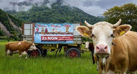 Los-suizos-rechazan-prohibicion-de-los-pesticidas-sinteticos