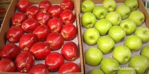 Gobierno-modifica-los-aranceles-para-la-importacion-de-ocho-tipos-de-alimentos