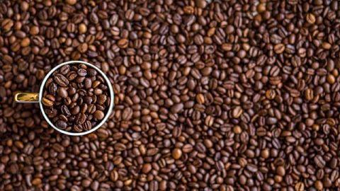 Un estudio científico reveló que tomar mucho café encoge el cerebro y aumenta el riesgo de demencia