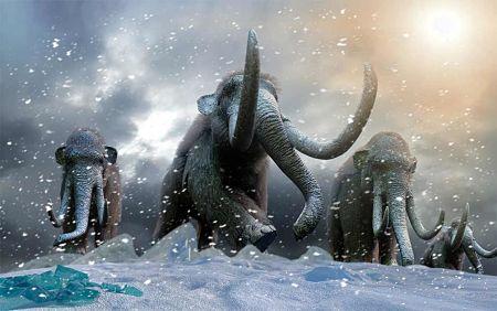 Mamuts lanudos: científicos buscan revivirlos en un laboratorio y devolverlos al Ártico
