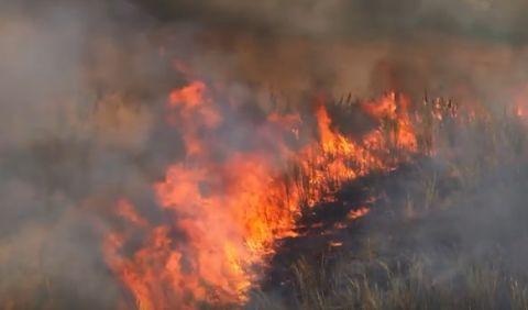 Se reactiva el fuego en el parque Amburaí y 10 son los municipios afectados