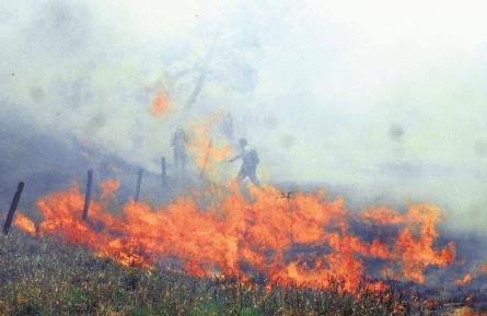 Porongo,-zona-de-desastre-por-incendio