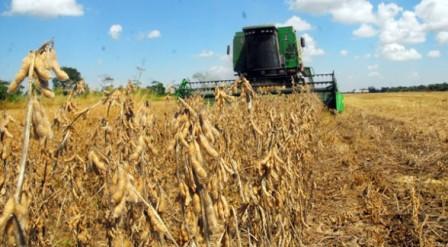 -YPFB-garantiza-entrega-de-diesel-para-el-sector-agropecuario-