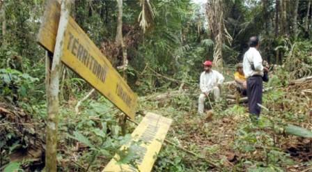 MAS-aprueba-Ley-corta-sobre-la-consulta-a-indigenas