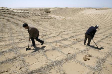 FAO-denuncia-la--degradacion--del-25%-de-las-tierras-del-planeta